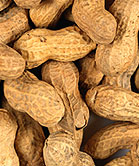 Allergen-free foods, special diets alone cost